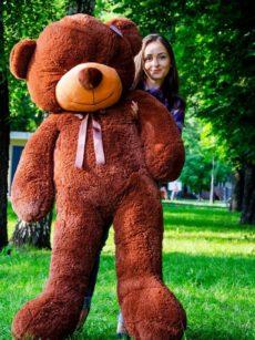 Рафаэль 180 см Шоколадный