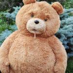"""Тед из фильма """"Третий лишний"""""""