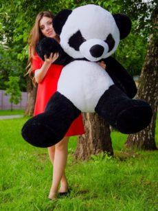 Панда 140 см Украина