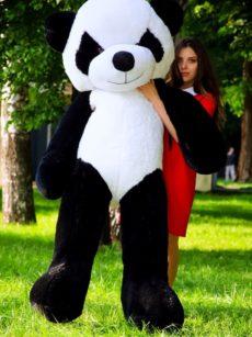 Панда 200 см Украина
