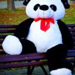 Панда Рональд 200 см — Coolbear