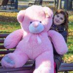 Ветли 130 розовый 2